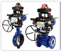 Ball Valves Manufacturers, Suppliers, Exporters,Dealers in India