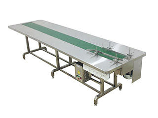 Packing Line Conveyor
