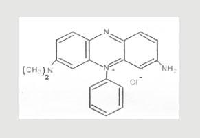Basic Violet 5 (Dimethyl Safranine)