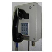 Weatherproof Telephone